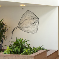 Vinyl Wall Decal Sticker Spotted Stingray #5502