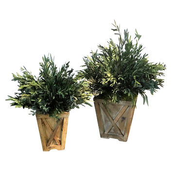 (Set of 2) Eucalyptus Reclaimed Wood Town & Country Planters