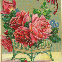 Planter of pink red roses on Heymann vintage postcard Heartiest Congratulations 1912 Solomon Brothers Publishing