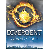 Divergent Book Cover Poster