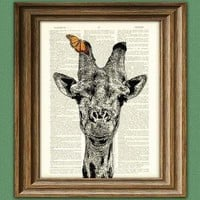 Giraffe with Butterfly illustration beautifully by collageOrama