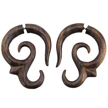Ohm - Steel Pin Cheaters - Sono Wood Earrings