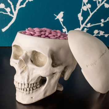 Skulls Think Outside the Box by ModCloth