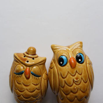 Vintage Ceramic Owl Salt and Pepper Shakers 1960s