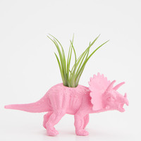Small Dinosaur Planter with Air Plant Room Decor, College Dorm Ornament Plants and Edibles, Pink