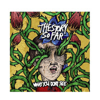 The Story So Far - What You Don't See Vinyl LP | Hot Topic