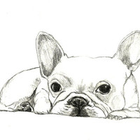 French Bulldog Art - Little French Bulldog - Dog Art