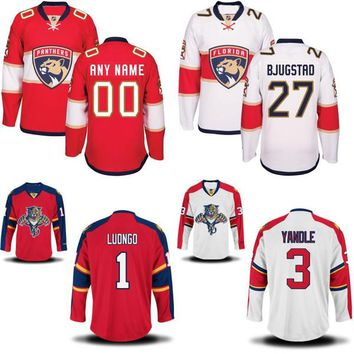 Florida Panthers Jersey Men's 27 Nick Bjugstad 41 Gregg McKegg 48 Michael Sgarbossa 100% Stitched Embroidery Logos Hockey Jerseys Any Name