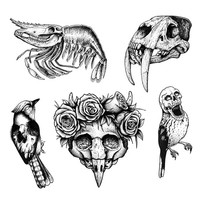Bones 'N Birds - Temporary Tattoo (Set of 10)