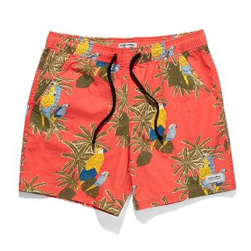 Banks Macaw Boardshort