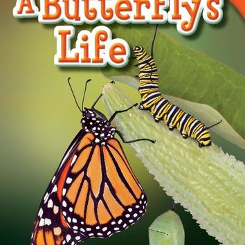 A Butterfly's Life Time for Kids Nonfiction Readers 2