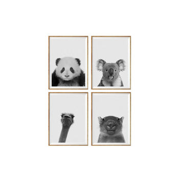 Set of 4 Prints Animal Panda, koala, ostrich, baby wombat Nursery Animal Wall Art Black White Nursery Decor Animal Print Nursery Poster *52*