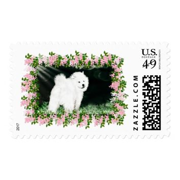 Samoyed Matching US First Class Stamp, see Desc Postage