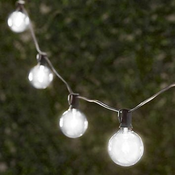 Frosted Party String Lights (100ft-100 Sockets)