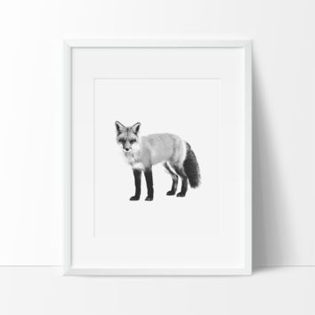 I See You Fox Black and White Sketch, Wall Art, Modern Prints