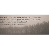 Photo Bookmark John Steinbeck Quote | Travels with Charley | Trees Winter Fog | Book Lover | Reader | Under 5 | How Can One Know Color |