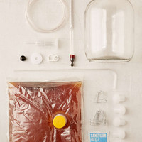 Brooklyn Brew Shop Bubbly Sparkling Wine Kit - Urban Outfitters