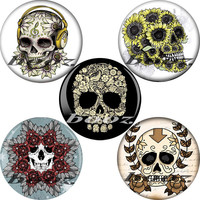 cool body jewellery picture piercing acrylic ear earrings plug flesh tunnel gauges AE-1068
