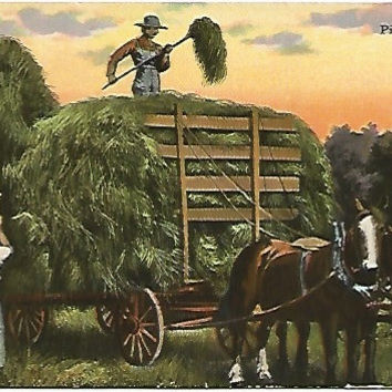 "Antique Postcard ""Pitching Hay"" Horse drawn Hay Wagon Farmers Sunset"