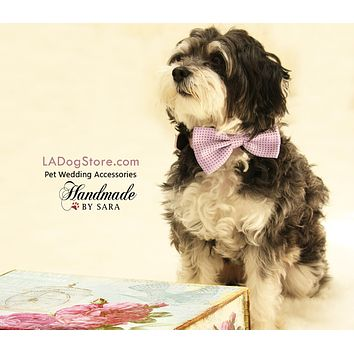 Purple dog bow tie attached to collar, wedding collar, dog birthday gift