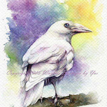 PRINT – Silver Raven Watercolor painting 7.5 x 11""
