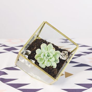 "Hira Glass Geometric Terrarium Container in Gold - 3.75"" L x 3.5"" W x 3.5"" H"