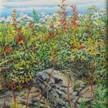 "Art Original Oil Pastel Drawing Landscape Quebec Canada Audet "" A wild place in the garden "" 16"" x 21.5"""