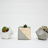 Modern small geometric Icosahedron planter for succulents or airplants wedding favor