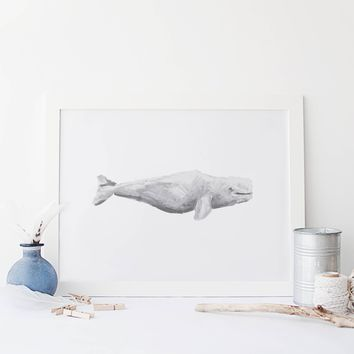 Watercolor Beluga Whale Wall Art Print