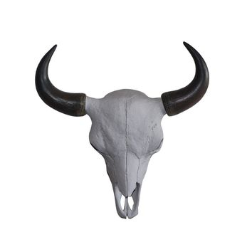 The Large Yellowstone Skull | Buffalo Bison Skull | Faux Taxidermy | White + Natural Horns Resin