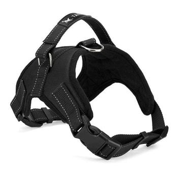 DCCKU7Q Large Dog Harness Padded Chest Strap Heavy Duty with Handle Comfortable for Labrador Golden Retriever Samoyed Husky Dogs-L