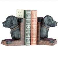 Lab Display Bookends