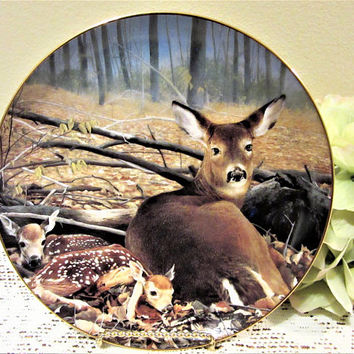 Deer Doe Fawn Plate Limited Edition Fresh Start by Bob Travers Collector Porcelain Fine China blm