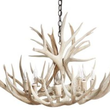 Shed Antler Chandelier, Sunbleached, Ceiling Chandeliers