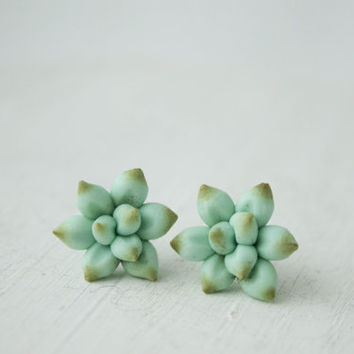 Blue green Succulent Planter Stud Earrings small hypoallergenic studs earstuds succulent plants wreath arrangement Succulent wedding Jewelry
