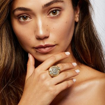 Free People Labradorite Medallion Ring