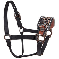 Dark Painted Floral Bar H Equine Bronc Halter