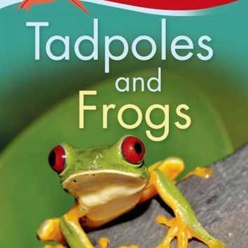 Tadpoles and Frogs (Kingfisher Readers. Level 1)