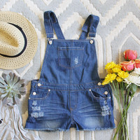 Camper Distressed Overalls