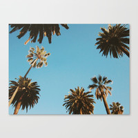 LA PALMS Canvas Print by designbyform