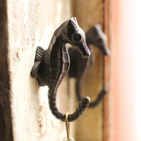 Cast Iron Seahorse Wall Hooks - Set of 2