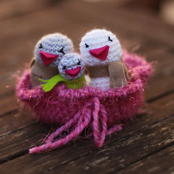 Bird Family, Crochet Birds Nest, Amigurumi Bird, Love Birds, Nesting Bowl, Family Gifts, Newborn Gift, Baby Shower Gift, Baby Bird, New Baby
