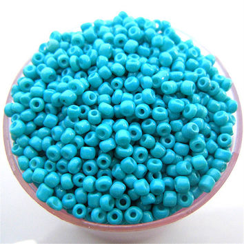 Free Shipping Sale Blue Color Shining 1000Pcs 2mm Czech Glass Seed Spacer Beads Jewelry Making DIY Pick 46 Colors
