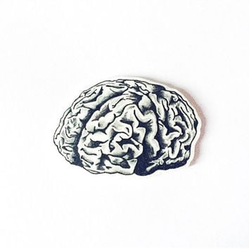 Hand Illustrated Brain Plastic Brooch - Anatomical Gifts, Science Lovers, Psychology, Psychiatry, Neuroscience