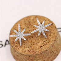 925 Silver Korean Stylish Accessory Strong Character Earrings [8740057607]