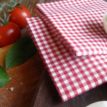 Picnic Napkins SET of 4 - Retro Red Gingham Kitchen Table Napkins - Rustic Reusable Eco Friendly Decor
