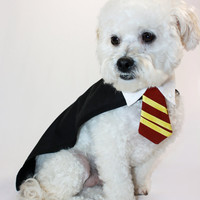 Dog costume Harry Potter-xs-m