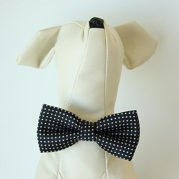 Onyx Black polka dots bow, Small bow tie collar, Puppy Collar, Cat collar, Cat bow tie collar, Leather