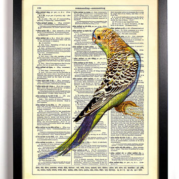 Cute Parakeet Bird Book Art Upcycled Vintage Book Page Antique Dictionary Buy 2 Get 1 FREE