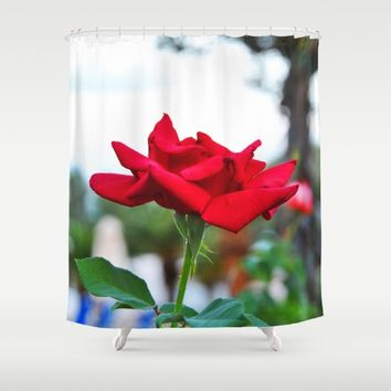 Red Rose Shower Curtain by Azima